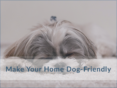 Make-Dog-Friendly-Oakville